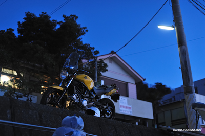 morito_blue400.jpg