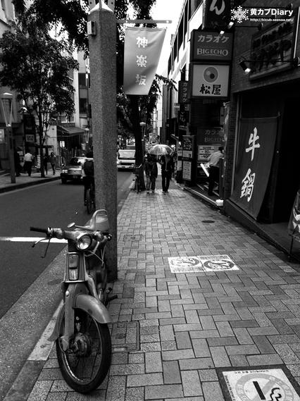 1_kagurazakacub.jpg
