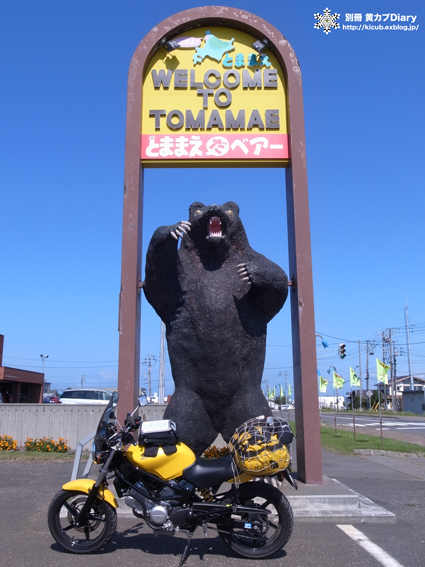 1_tomamaedabear.jpg
