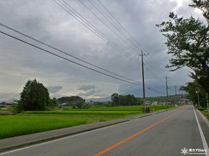 9_fujitokaoyamatoka.jpg