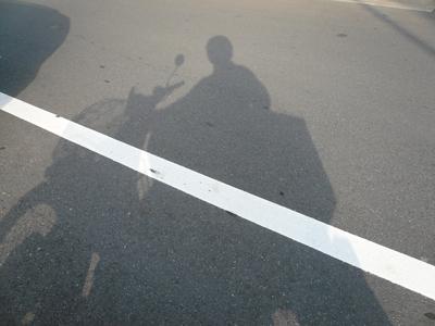 cub_shadow.jpg