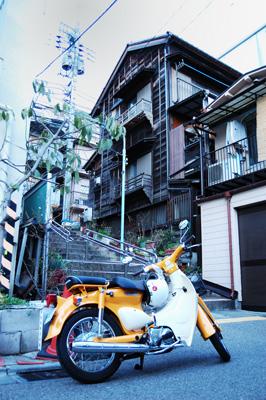 kikusaka_kaidan2.jpg