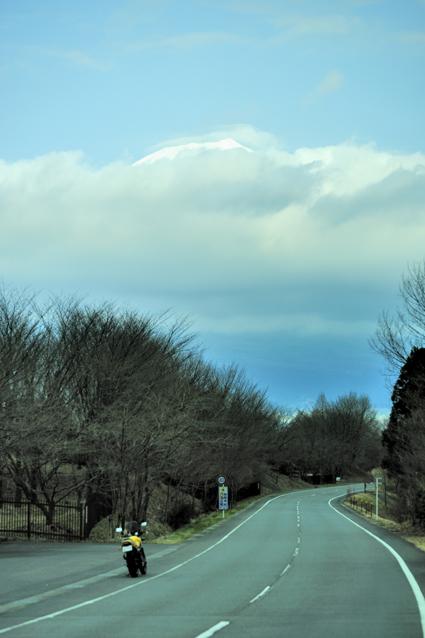 tanukiko_road.jpg