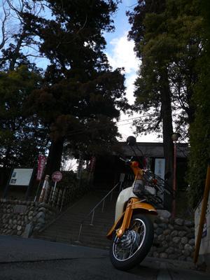 yoshimikannon.jpg